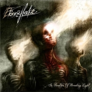 Review: Ebonylake - In Swathes Of Brooding Light