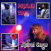 Review: Paisley Tree/Space Debris - Split Single: Spiral Cage/New Rag