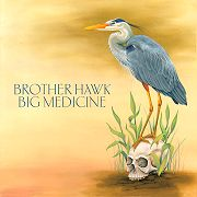Brother Hawk: Big Medicine
