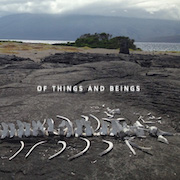 Review: Lost World Band - Of Things And Beings