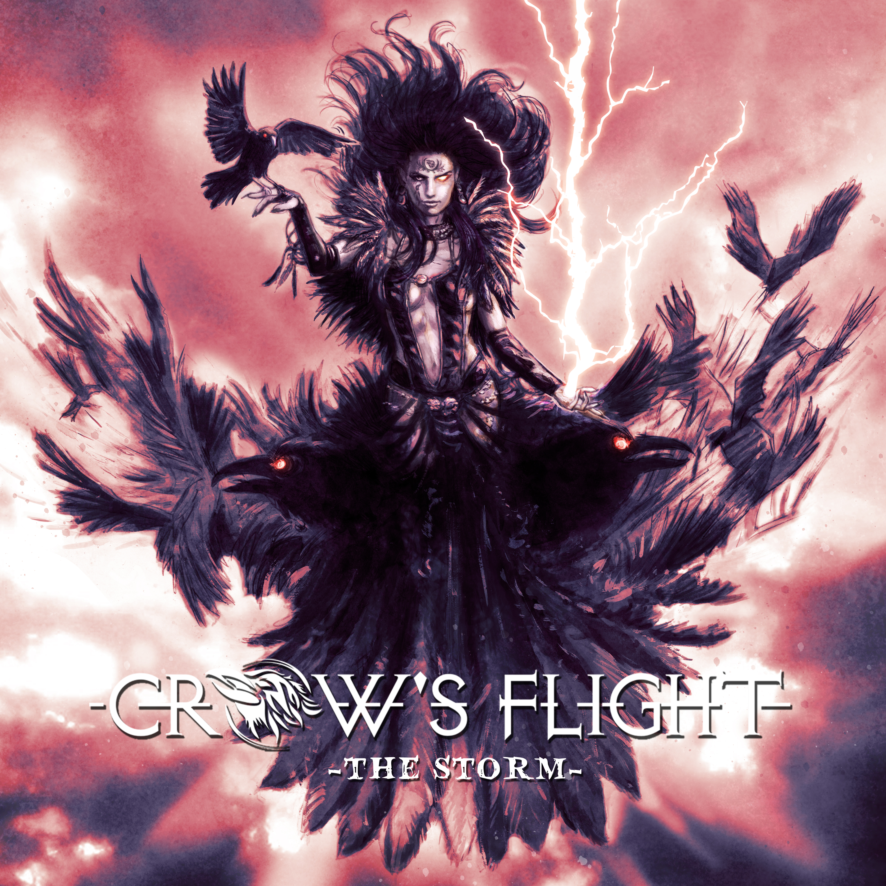 DVD/Blu-ray-Review: Crow's Flight - The Storm
